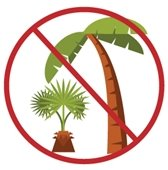 No Palm in Green Waste Piles or Organics Carts