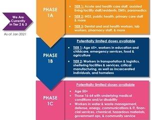 Yolo Vaccine Timeline
