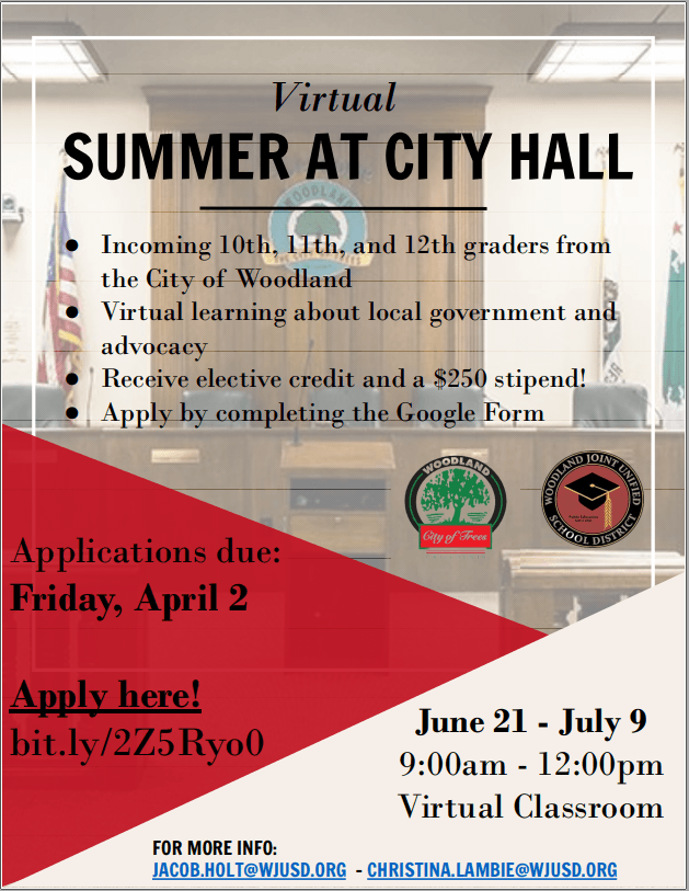 Summer at City Hall 2020 flyer